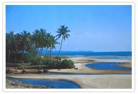 benaulim beach in south goa